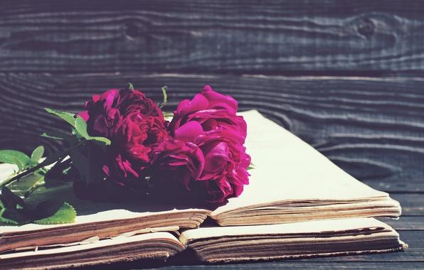 Картинка розы, vintage, wood, flowers, beautiful, purple, book