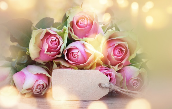 Картинка розы, бутоны, pink, flowers, romantic, roses, valentine`s day