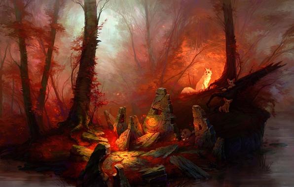 Фото обои лес, камни, магия, арт, forest, red magic