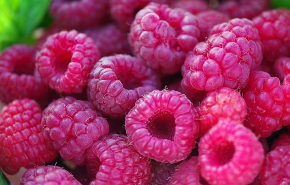 Картинка осень, макро, природа, ягоды, малина, красота, позитив, урожай, сладко, десерт, множество, лакомство, услада