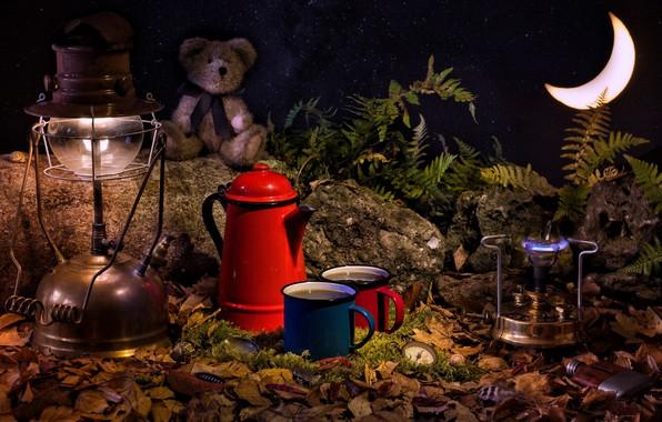 Картинка листья, камни, игрушка, часы, лампа, месяц, медведь, кружки, папоротник, горелка