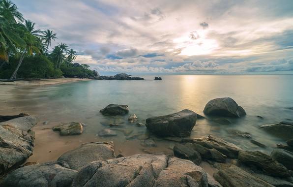 Картинка море, пляж, пейзаж, тропики