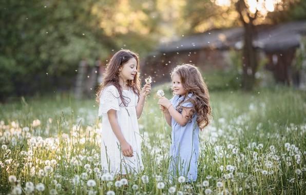 Картинка радость, девочки, одуванчики