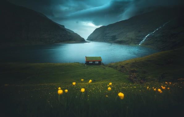 Картинка трава, цветы, горы, домик, фьорд