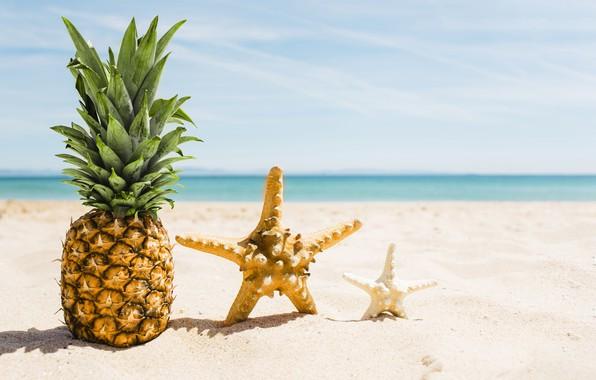 Картинка песок, море, пляж, лето, отдых, звезда, summer, ананас, beach, каникулы, sea, sand, pineapple, vacation, starfish