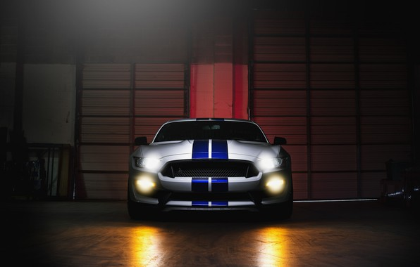 Картинка Mustang, Ford, Shelby, GT500, Light, Front, White, Sight