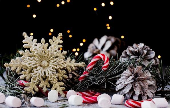 Картинка праздник, новый год, рождество, конфеты, хвоя, шишки, снежинка, декор