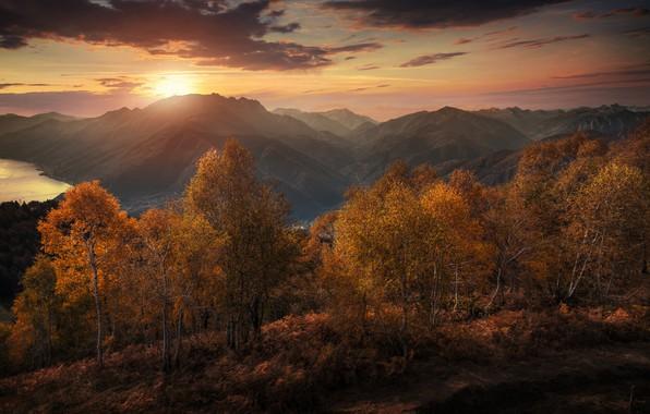 Картинка осень, деревья, закат, горы, озеро, Швейцария, Альпы, Switzerland, Alps, Lake Maggiore, Тичино, озеро Лаго-Маджоре, Canton ...
