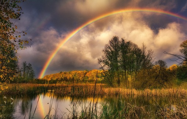 Картинка Осень, Озеро, Радуга
