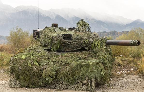 Картинка дуло, танк, маскировка, Leopard 2