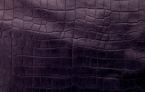 Картинка кожа, texture, leather, purple, crocodile skin
