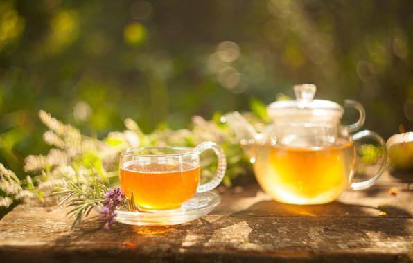 Картинка зеленый, чай, напиток