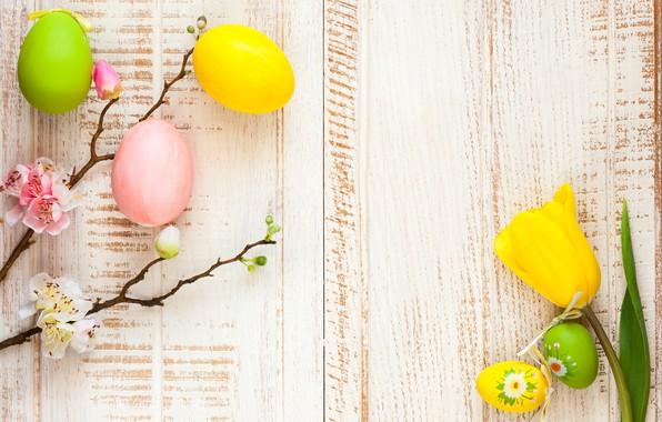 Картинка цветы, ветки, apple, весна, Пасха, тюльпаны, wood, blossom, flowers, tulips, spring, Easter, eggs, decoration, Happy, …