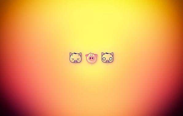 Картинка cat, dog, funny, pig