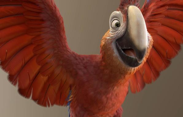 Картинка настроение, арт, попугай, полёт, Yannick Vincent, Tuesday // Robinsson Crusoe