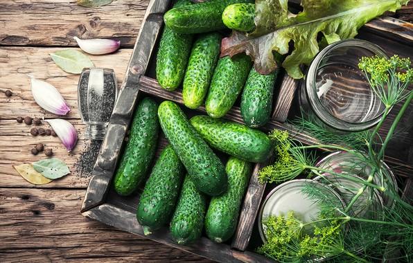Картинка зелень, доски, укроп, овощи, огурцы, специи, чеснок