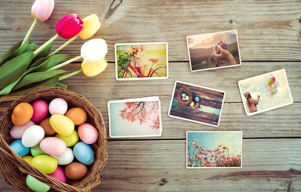 Картинка цветы, фото, яйца, весна, colorful, Пасха, тюльпаны, wood, pink, flowers, tulips, spring, Easter, eggs, decoration, …