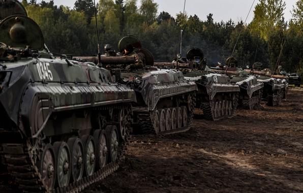 Картинка боевая, бронетехника, БМП-1, BWP-1, машина пехоты