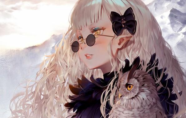 Картинка Girl, long hair, anime, art, birds, glasses, artwork, owl, sweater, anime girl, hair ornament, pointy …