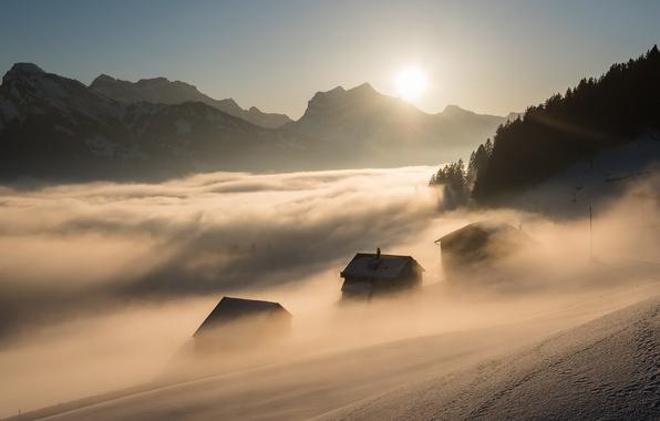 Картинка свет, горы, туман, утро