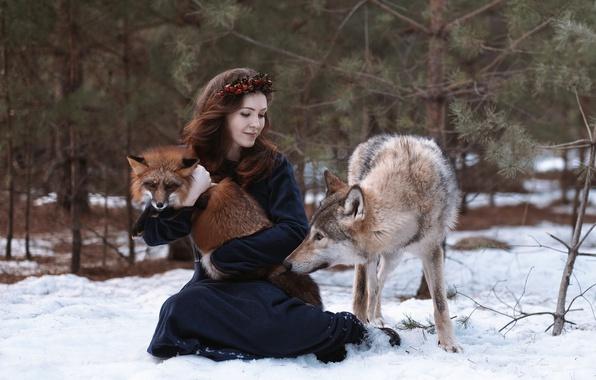 Картинка девушка, волк, лиса