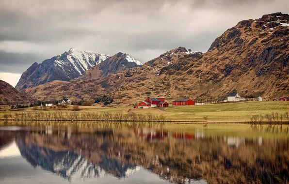 Картинка облака, деревья, горы, берег, Норвегия, залив, домики, кусты, Лофотенские острова, Lofoten