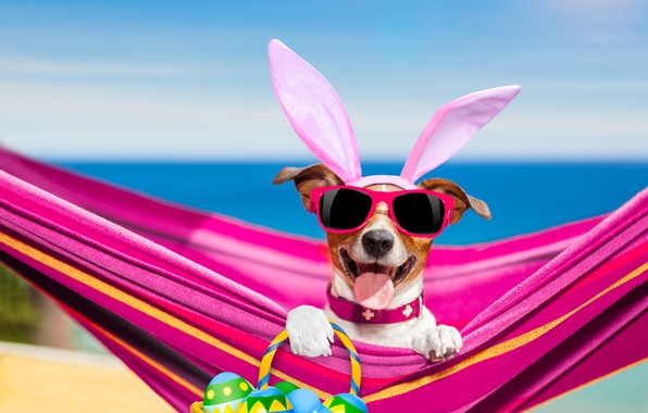 Картинка море, язык, пляж, небо, солнце, праздник, корзина, фотошоп, яйца, юмор, лапы, горизонт, очки, пасха, гамак, …