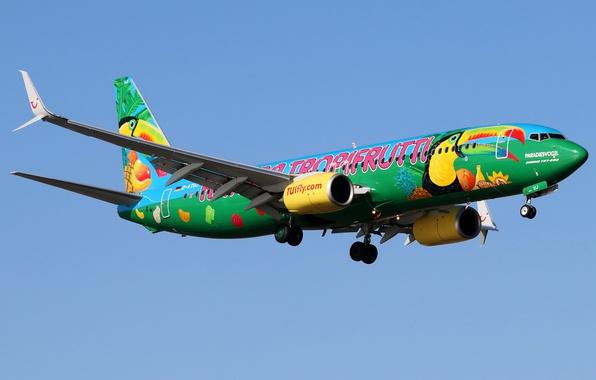 Фото обои летит, небо, солнце, самолет, Boeing 737-8K5, пассажирский