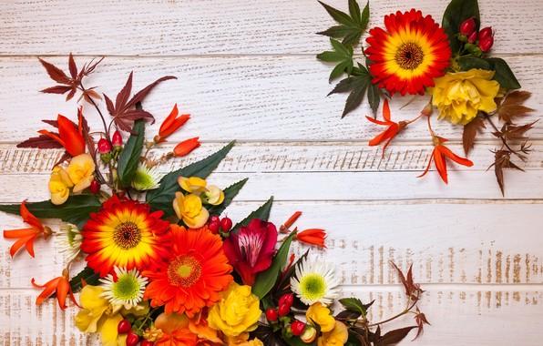Картинка осень, листья, цветы, wood, flowers, autumn, leaves, композиция, frame, floral
