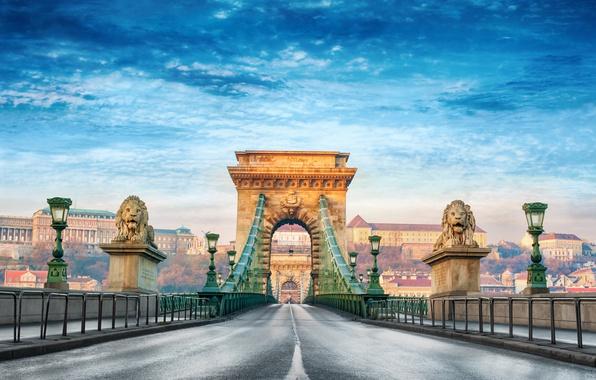 Картинка лето, город, размытость, боке, красивый вид, Венгрия, Hungary, подвесной мост, Будапешт, travel, Budapest, Цепной мост …