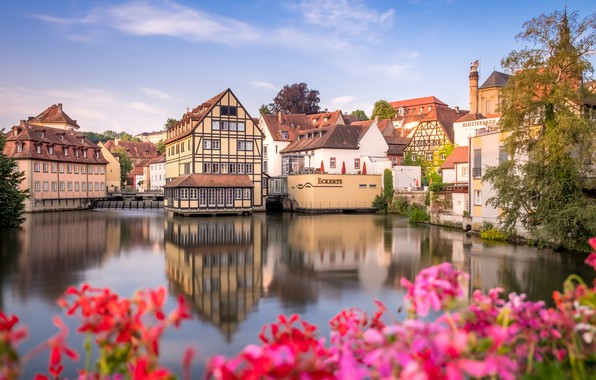 Картинка цветы, река, здания, дома, Германия, Бавария, Germany, Bamberg, Bavaria, река Регниц, Бамберг, Regnitz River