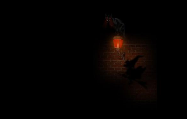 Картинка ночь, страх, тьма, тень, фонарь, клыки, кирпичная стена, горящие глаза, witch, черная кошка, на метле, …