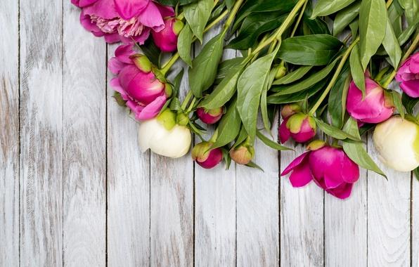 Картинка букет, бутоны, wood, pink, flowers, romantic, пионы, peonies