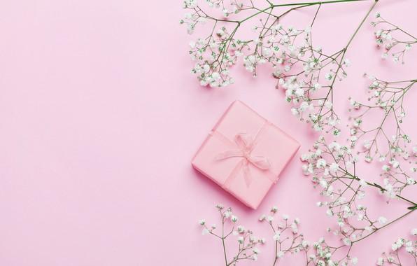 Картинка цветы, фон, подарок, розовые, pink, flowers, beautiful, romantic, present, gift, tender