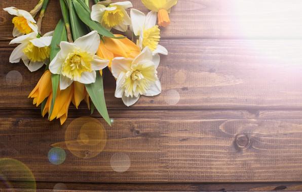 Картинка цветы, букет, весна, тюльпаны, wood, flowers, tulips, нарциссы, spring