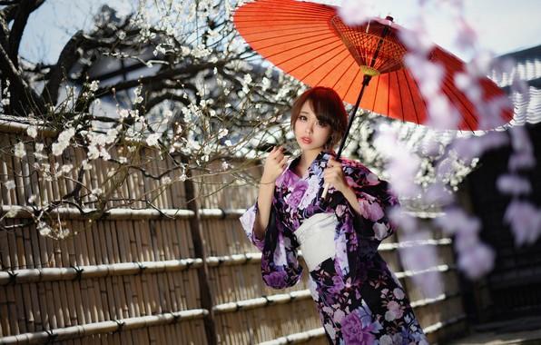 Картинка стиль, зонтик, фон, азиатка