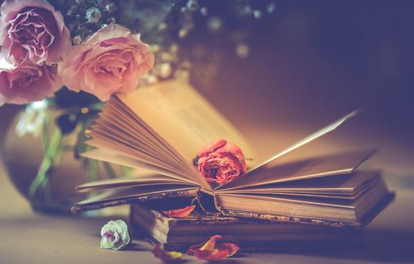 Картинка цветы, стиль, книги, розы, букет, лепестки, бутон