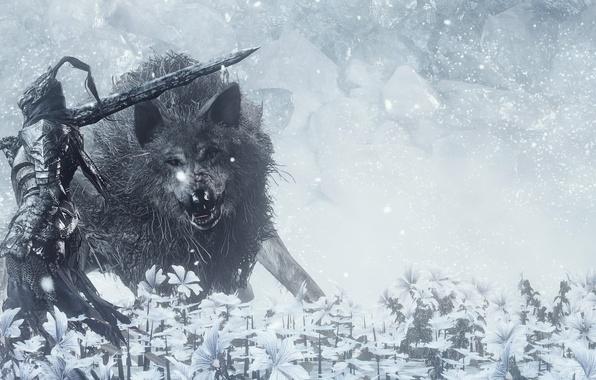 Картинка sword, game, flower, armor, ken, animal, wolf, blade, Dark Souls, hana, Dark Souls 3, Dark …