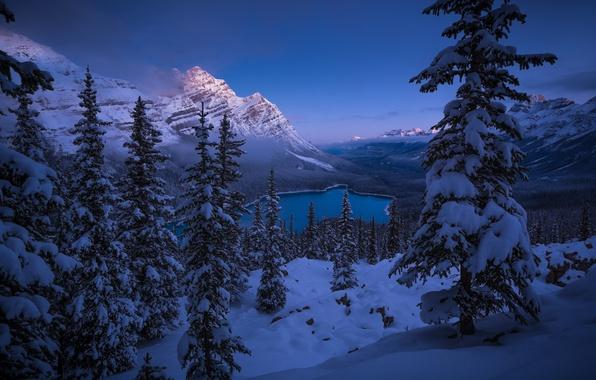 Картинка зима, снег, горы, озеро, ели, Канада, панорама, Альберта, Banff National Park, Alberta, Canada, Скалистые горы, …