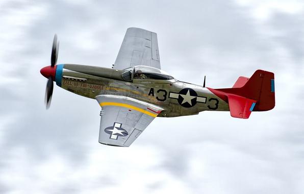 Картинка истребитель, P-51D, периода, одноместный, Второй мировой войны, дальнего радиуса