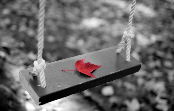 Картинка осень, лист, качели