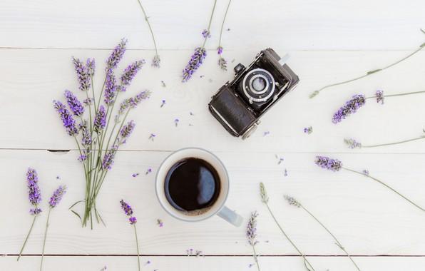 Картинка кофе, букет, чашка, wood, flowers, лаванда, cup, coffee, lavender