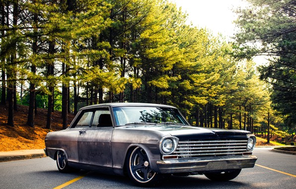 Картинка Chevrolet, Nova, 1963, Wheels, Rodster, Forgeline