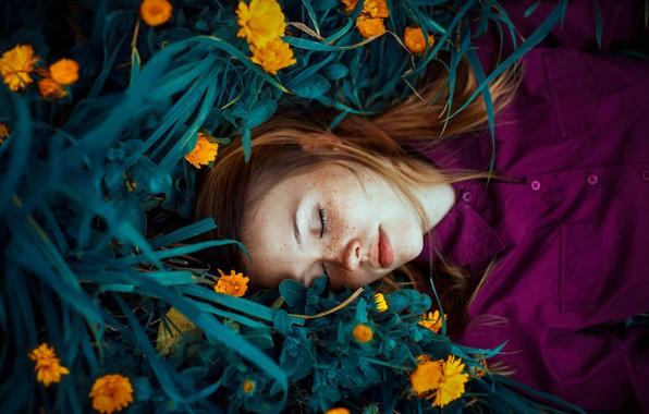 Картинка трава, девушка, цветы, сон, веснушки, рыжая, рыжеволосая, календула, Ronny Garcia, конопатая, спящая девушка