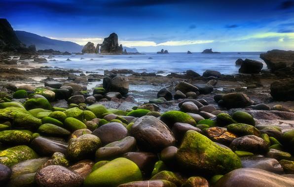 Картинка море, пейзаж, камни, мох, Природа