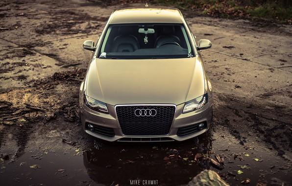 Картинка Audi, Авто, Ауди, Лес, Машина, Капот, Грязь, Седан, Автомобиль, Sedan, Передок, Audi A4, Бревна, Немец, …