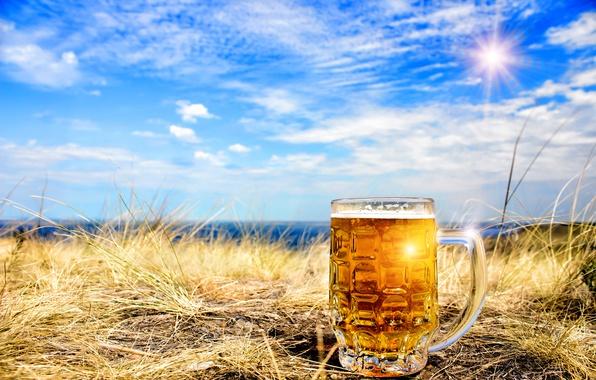 Картинка небо, трава, солнце, облака, пейзаж, пиво, кружка, боке