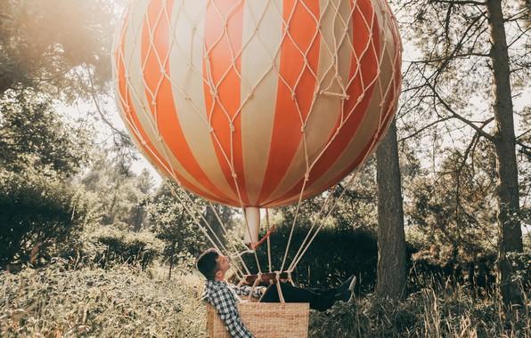 Фото обои Adam Bird, Up Up and Away, лес, воздушный шар