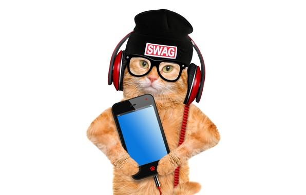 Картинка кот, шапка, фотошоп, юмор, наушники, рыжий, очки, белый фон, смартфон