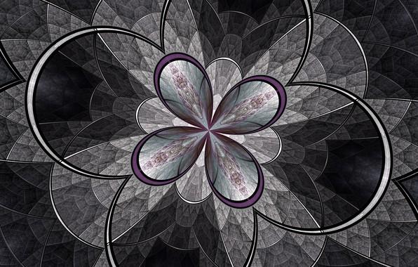 Картинка цветок, линии, узор, дуга, фрактал